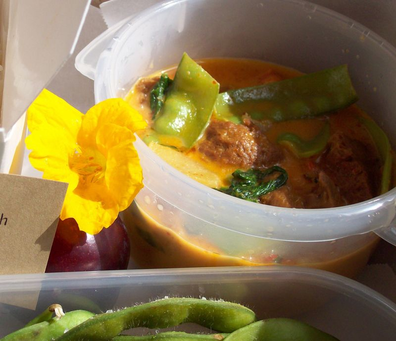 Red thai curry 1